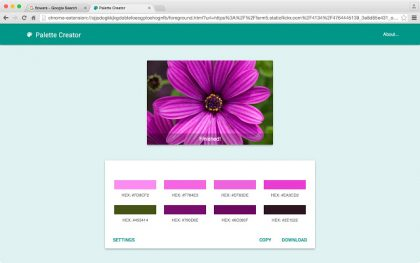 palette-creator-extension-chrome-3