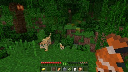 minecraft-windows-10-edition-1-450x253