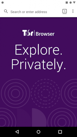 tor-browser-android-1-253x450